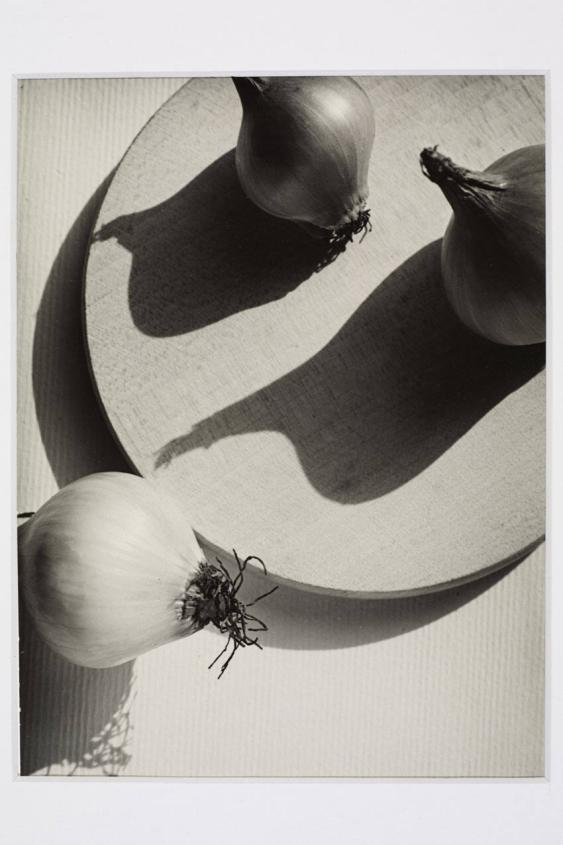 Zwiebeln in der Sonne